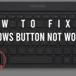 windows button not working